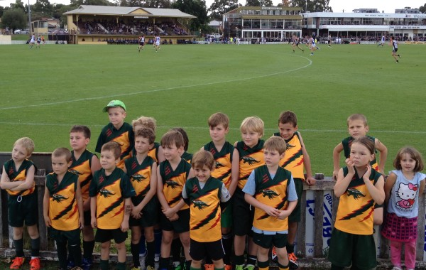 Auskick @ Blue Steel Oval